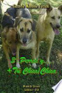3 Perros y… + Tú Chico/Chica