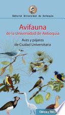 Avifauna de la Universidad de Antioquia
