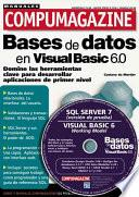 Bases de Datos en MS Visual Basic 6.0
