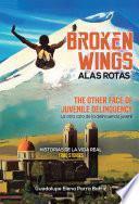 Broken Wings Alas Rotas