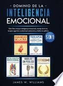 Dominio de la inteligencia emocional