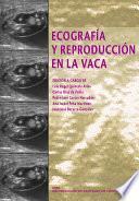 Ecografía y reproducción en la vaca