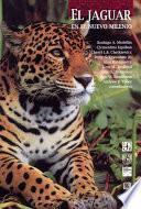 El jaguar en el nuevo milenio