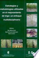 Estrategias y metodologías utilizadas en el mejoramiento de trigo: un enfoque multidisciplinario