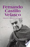 Fernando Castillo Velasco