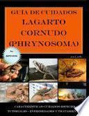 Guía de cuidados del lagarto cornudo (Phrynosoma) Versión económica