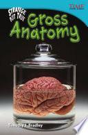Increíble pero real: Anatomía gruesa (Strange but True: Gross Anatomy) 6-Pack