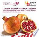 La Fruta Granada Cultivada en España Punicalagina Antioxidante del Zumo de Granada y el Extracto de Granada en la Alimentación Funcional del Futuro