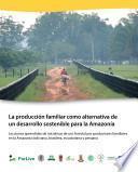 La producción familiar como alternativa de un desarrollo sostenible para la Amazonía : lecciones aprendidas de iniciativas de uso forestal por productores familiares en la Amazonía boliviana, brasilera, ecuatoriana y peruana