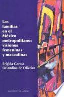 Las familias en el México metropolitano