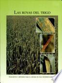 Las royas del trigo: Conceptos y metodos para el manejo de esas enfermedades