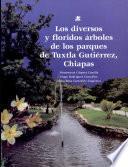 Los diversos y floridos árboles de los parques de Tuxtla Gutiérrez, Chiapas
