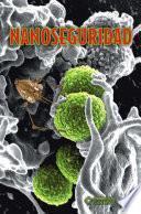 Nanoseguridad