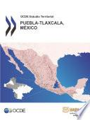 OCDE Estudio Territorial: Puebla-Tlaxcala, México 2013