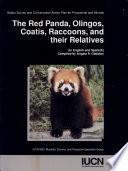 Panda Rojo, Los Olingos, Los Coatíes, Los Mapaches Y Sus Especies Emparentadas