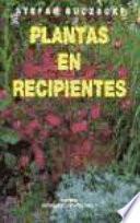 Plantas en recipientes
