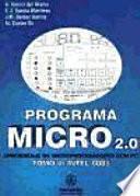 Programa Micro 2.0