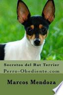 Secretos del Rat Terrier
