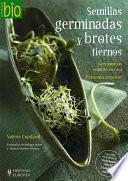 Semillas germinadas y brotes tiernos