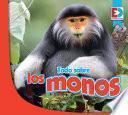 Todo sobre los monos
