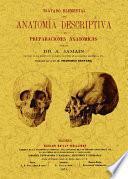 Tratado elemental de anatomia descriptiva y de preparaciones anatómicas