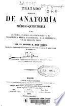 Tratado elemental de anatomía médico-quirúrgica ó sea anatomía aplicada a la patología y á la terapéutica médica y quirúrgica, a la obstetricia y á la medicina legal