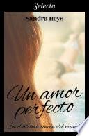 Un amor perfecto (En el último rincón del mundo 1)